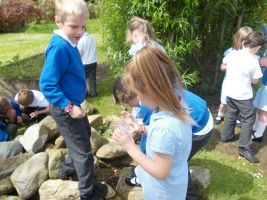 Finding Minibeasts
